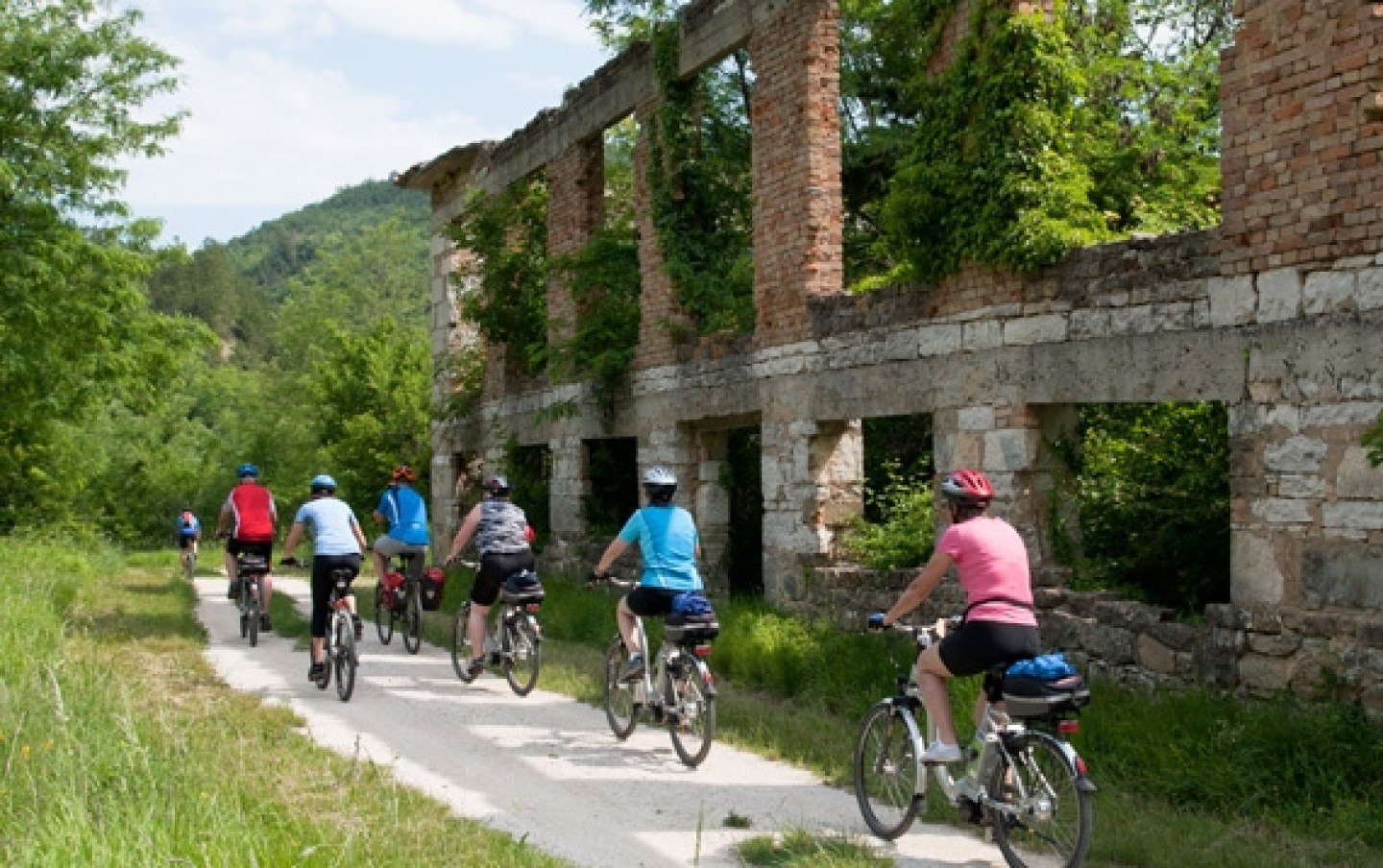 bike_istria_forest_original